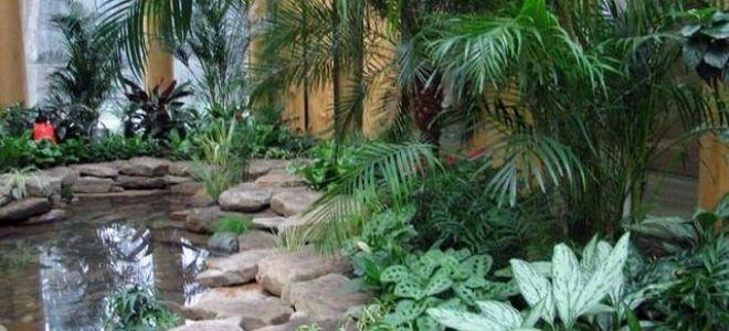 Прекрасный зимний сад в частном доме – фото и примеры