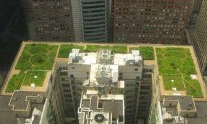 Крыши многоэтажных домов — интересные фото