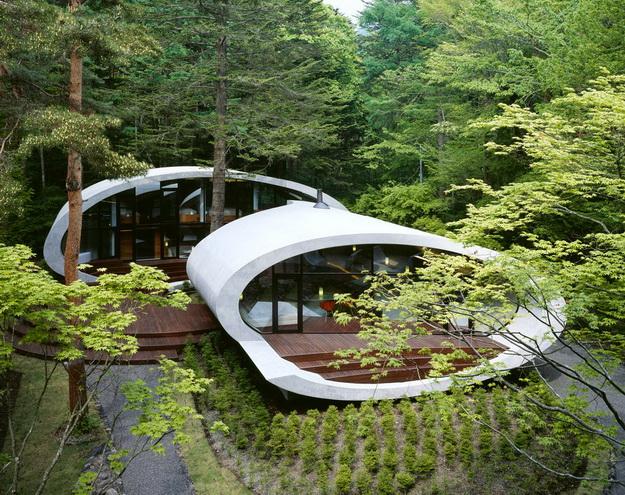 дизайн частного дома в лесу