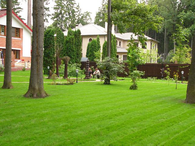 Лужайка перед домом