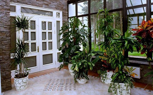 Прекрасный зимний сад в частном доме – фото и примеры 1