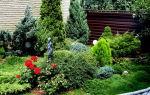 Ландшафтный дизайн с хвойными растениями перед частным домом