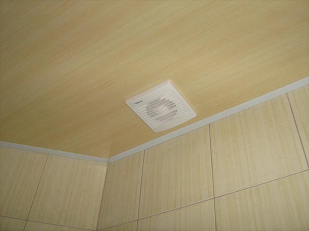 Вагонка ПВХ для внутренних работ в дизайне современной квартиры 4