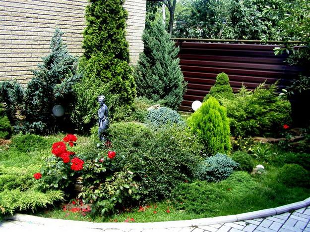 Ландшафтный дизайн с хвойными растениями перед частным домом 1