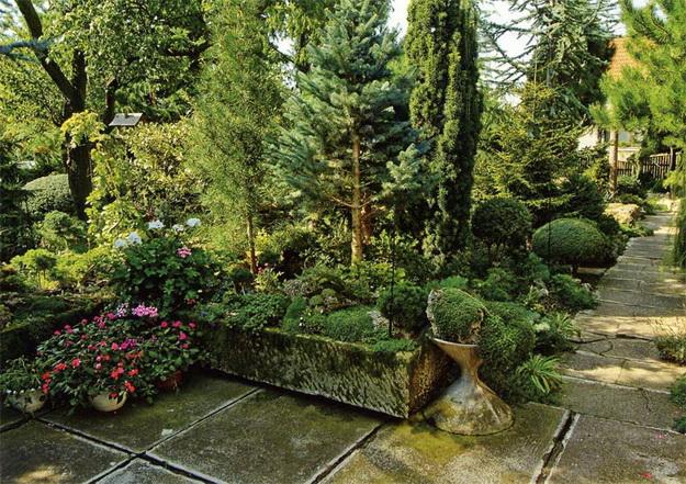 Ландшафтный дизайн с хвойными растениями перед частным домом 3