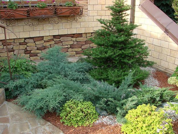 Ландшафтный дизайн с хвойными растениями перед частным домом 5