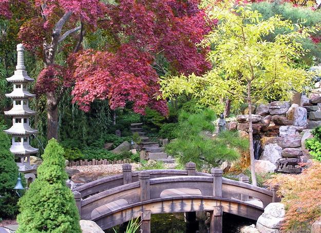 Интересный дизайн садового участка своими руками – фотогалерея и видео 6