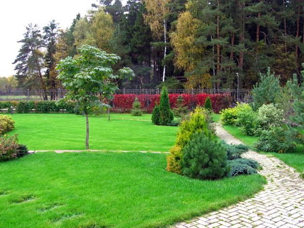 Интересный дизайн садового участка своими руками – фотогалерея и видео 9